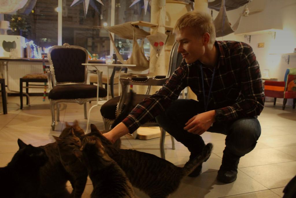 dominik z kocicami